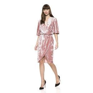Alexia Admor Flitter Sleeve Velvet Wrap Dress